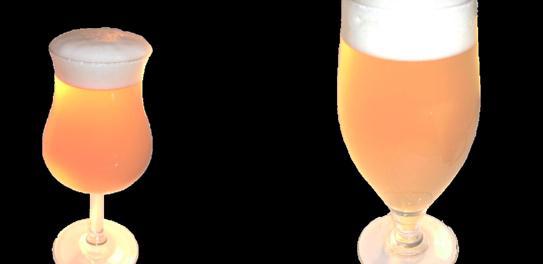 Benedictus déchaînée à la téquila